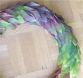 Maken van een bladkrans met de bladeren van een Forsythia of Chinees klokje