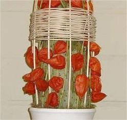 Herfstdecoratie met lampionplant, wilgetakken en pietriet