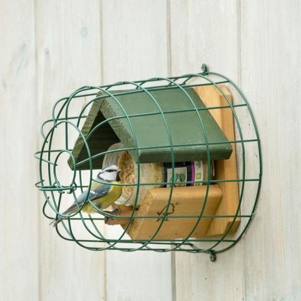 Vogels voeren, water geven en verzorgen in de winter
