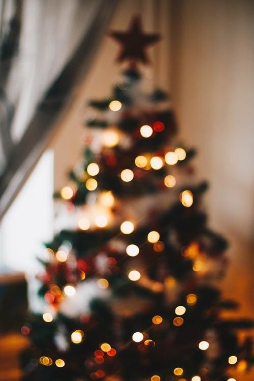 Tips om de kerstboom te verzorgen