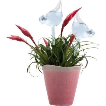 Water geven aan uw kamerplanten tijdens vakantie zonder oppas