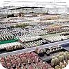 Tuinreis naar cactuskwekerijen in Duitsland