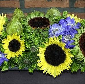 Bloemschikken: maken van een zomers bloemstuk met zonnebloemen, scabiosa, asclepias en phlox