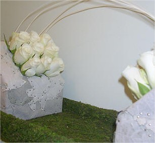 Witte abeel bladapplicatie