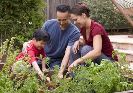Bloembollen planten met het hele gezin