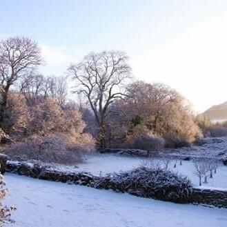 Tips voor de wintertuin