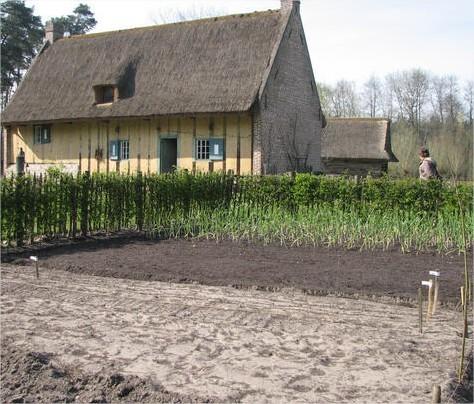 Teeltplan, wisselteelt - spitten - wanneer zaaien en planten in de groententuin