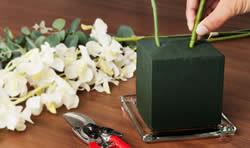 Tips om lang te genieten van je bloemschikking