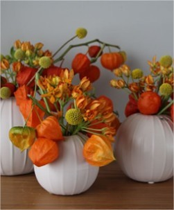 Physalis Lampion tak – herfstsfeer in huis