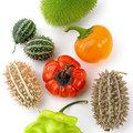 Sierfruit: soorten siervruchten en hun verzorging in de tuinen