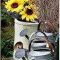Water geven in de tuin