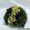 Helleborus en buxus bloemstuk