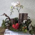 Valentijn orchidee