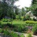 Ecologisch tuinontwerp