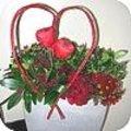 Valentijn met een rood hart