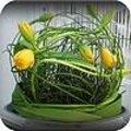 Voorjaarsstukje: gele tulpen