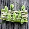 Een horizontale takkenconstructie met bloembuisjes als tafeldecoratie