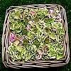 Hortensiabloemen in een mandje met zaaddozen van papavers.