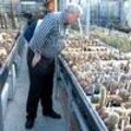 Forumuitstap cactussen & succulenten