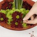 Bloemenfontein maken met chrysanten