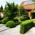 Mooiste tuin kleiner dan 250m²