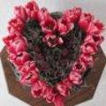 Valentijn met rode tulpen