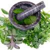 Kruiden telen in eigen tuin: keukenkruiden
