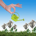 Voordelig tuinieren en besparen