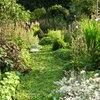 Meest bekeken tuinfoto's van de afgelopen week
