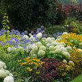 De invloed van kleuren in de tuin