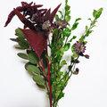 De schoonheid van een wild bloemenboeket