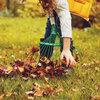 Najaarsonderhoud van het gazon: zo komt jouw grasmat de winter door