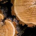 Veelgestelde vragen bij de aankoop houten producten