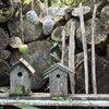 DIY: Verwen de vogels met zaden en bessen
