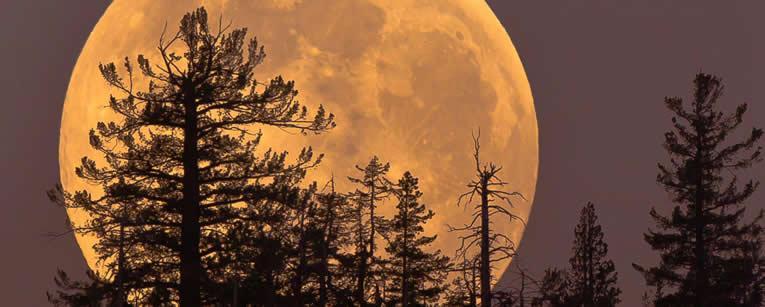supermaan of grootste maan op 14 november 2016