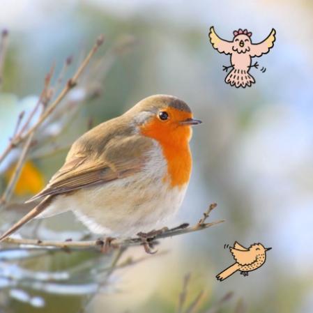 natuurpunt_vogeltelweekend