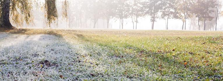 Het gazon veilig de winter door