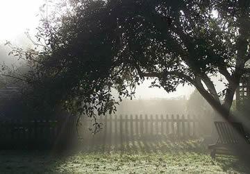 mystiek brengen in de tuin