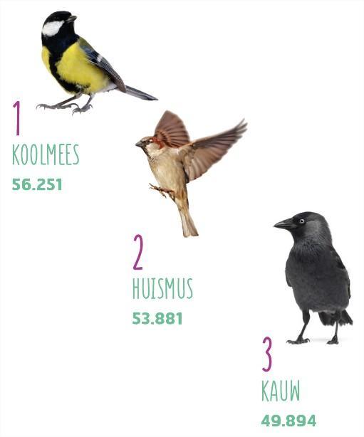 grote vogeltelweekend - resultaten 2018