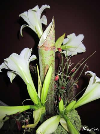 bloemschikken voor beginners