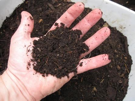 Composteren met een wormenbak