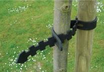 Zelfhechtende boomband -