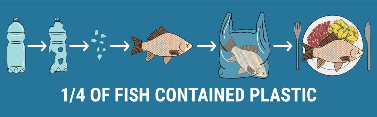 Microdeeltjes plastiek in vissen en uiteindelijk op ons bord
