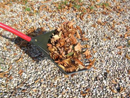 bladeren ruimen met de multihark