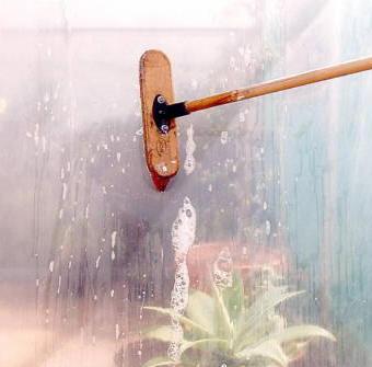 Goed en voorzichtig de ramen schrobben zorgt ervoor dat de planten veel meer zonlicht krijgen
