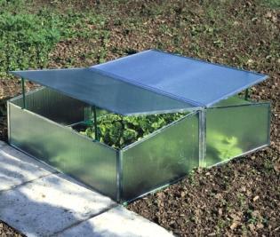Kweekbak Viola 1,20 m² - koude bak aan lage prijs en hoge kwaliteit
