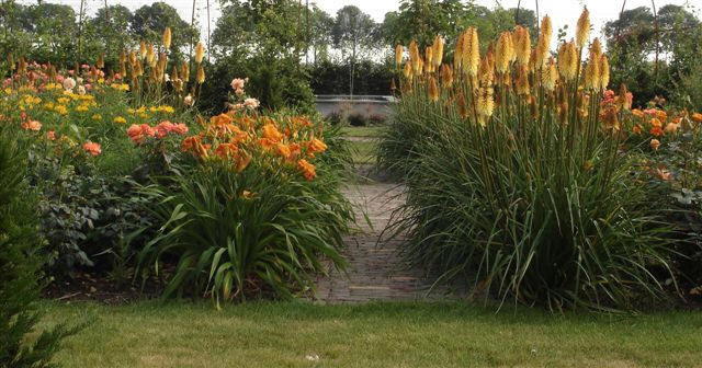 Zelf een bloemenborder aanleggen met beplantingsplan