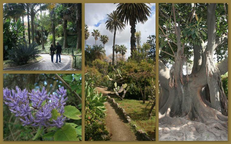 Jardim Botanico Lissabon