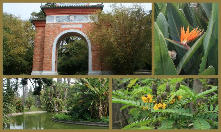 Jardim do Ultramar in Belém