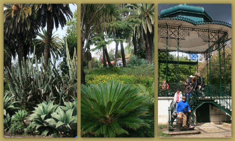 De tuin van Estrela